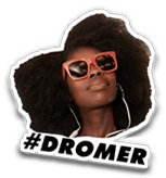 homepage dromer sticker