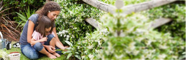 Tuinarchitectuur met Rob Verlinden